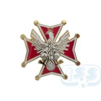 Pologne badge